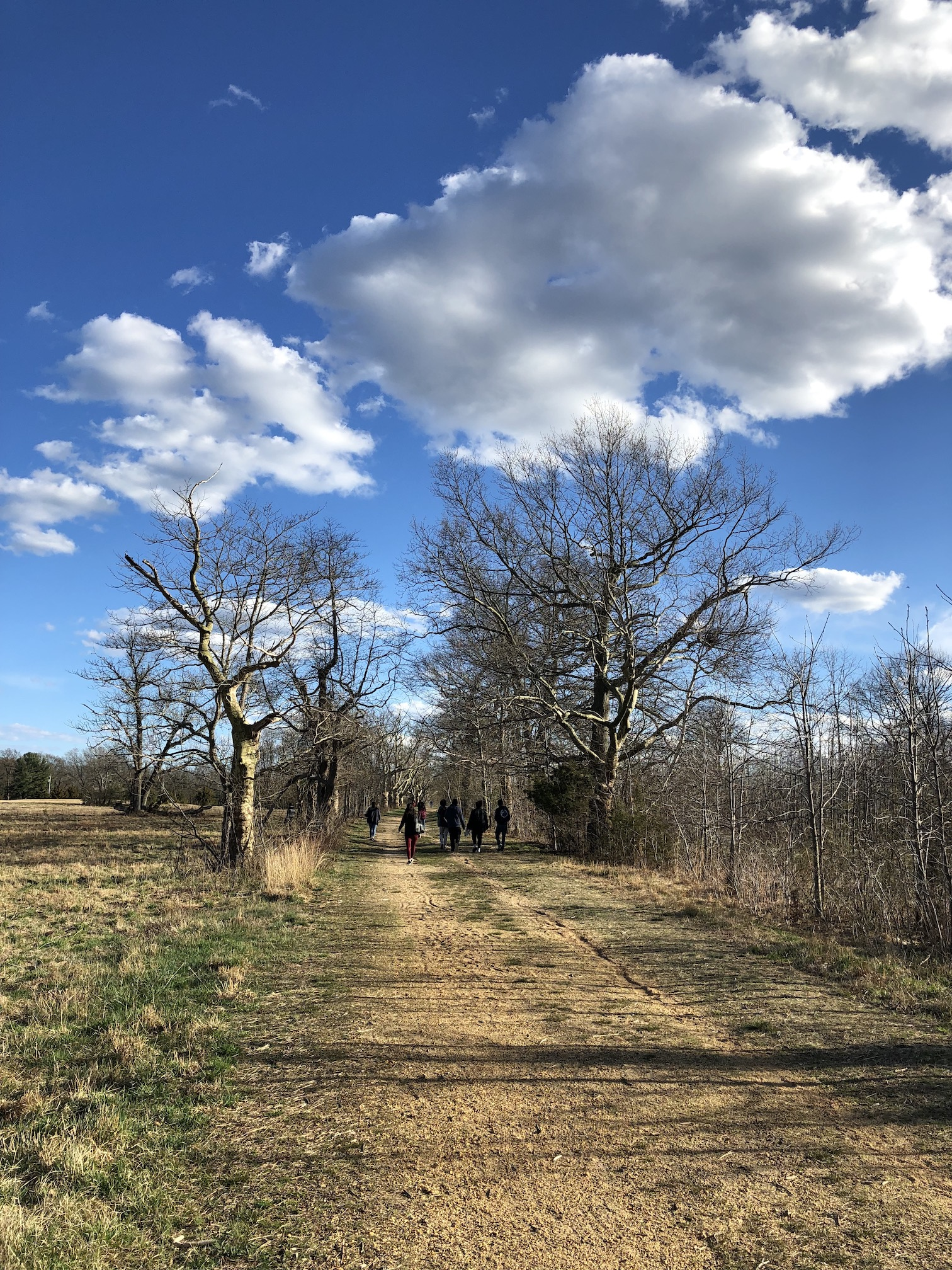 A Walk Through Weltz Park 2019